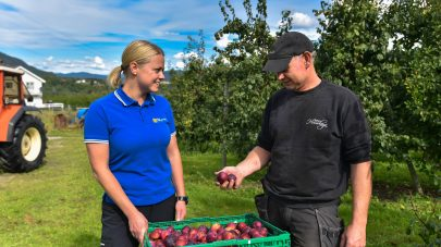 NLR frukt radgivingsavtale