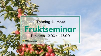 Fruktseminar