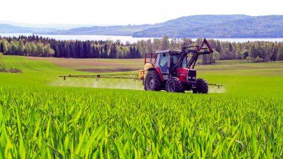 Vi gir deg oversikten over avstandskrav til vanlig midler i korndyrkinga. Foto: Morten Livengen