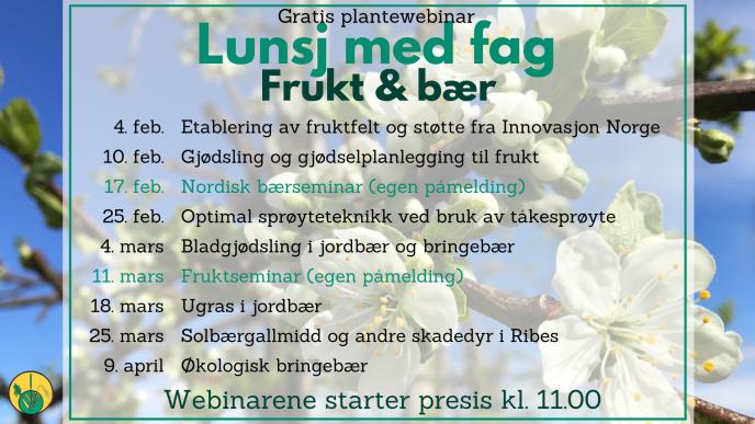 Plan Lunsj med fag frukt og baer