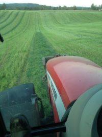 Traktor, faste kjørespor. Foto: Jon Herman Wold-Hansen